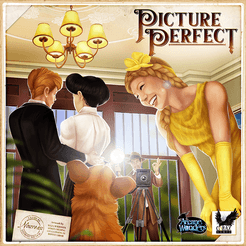 Picture Perfect Board Game cover